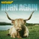 【中古】HORN AGAIN(初回限定盤)(DVD付)/the pillowsCDアルバム/邦楽