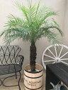 ハンドメイド樽付 フェニックスロベレニー10号鉢 L(Bタイプ) 140〜160cm 送料無料 観葉植物 ヤシの木 大型