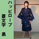 H16hisimoji_bk