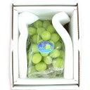 [ギフトパーク]岡山県産シャインマスカット 1房 化粧箱入り(1房あたり700g以上)【送料無料】ぶどう ブドウ 葡萄 贈り物 果物 通販 勤労感謝の日 お歳暮 御歳暮 フルーツギフト フルーツ ギフト