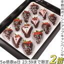 P5倍[1/20限定]バレンタインチョコ いちごチョコレート...