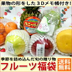 果物 ギフト 【敬老の日】大阪中央卸売市場のフルーツ福袋【あす楽対応】|【送料無料】 果物 ご贈答にも 季節 (プレゼント 誕生日 贈り物 お見舞い バースデー 祖母 女性 ギフト 贈答)