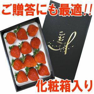 最高ランク【博多あまおうEX】9粒化粧箱