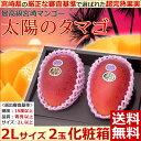 【シーズンオフ】【宮崎マンゴー 太陽のタマゴ 2Lサイズ2玉...