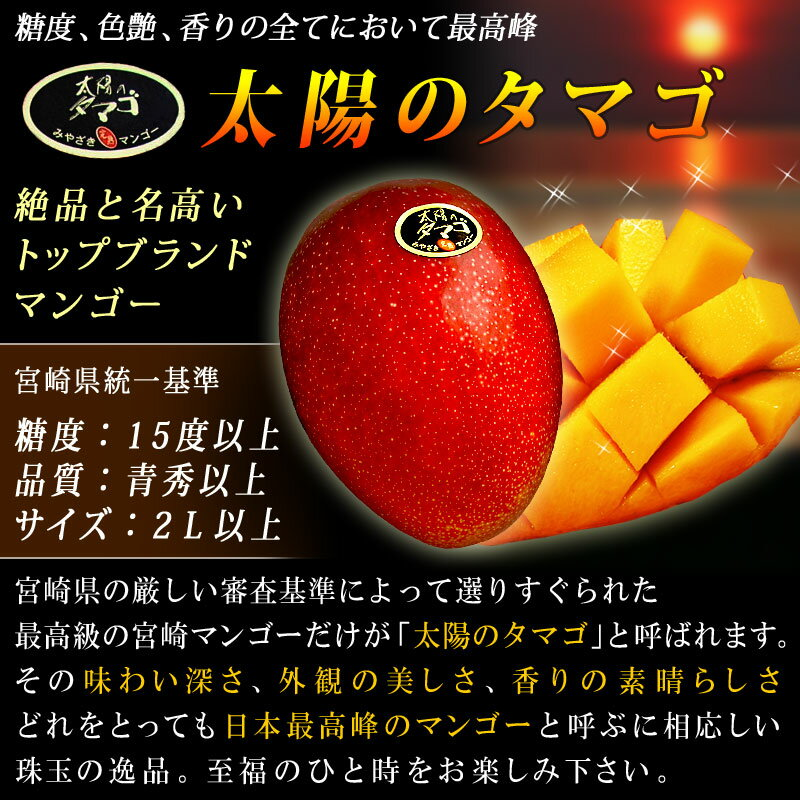 P2倍[6/24迄]【宮崎マンゴー 太陽のタマ...の紹介画像3