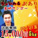 宮崎マンゴー訳あり ちょいわる宮崎完熟マンゴー5kg|送料無料 わけあり 訳待ち ワケマチ わけまち わけあり