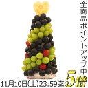 P5倍[10/26迄]【フルーツケーキ】カットフルーツフラワー ハッピーカラフルーツ ぶど