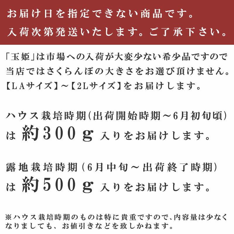 【シーズンオフ】佐藤錦さくらんぼ【玉姫】桐箱入...の紹介画像3