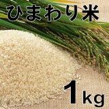 無農薬減米として栽培され地球温暖化が進み北の北海道でも食味が進みリーズナブルで安心できる栽培のお米です。ひまわり米 1kg お米 ほしのゆめ 北海道北竜町産【楽ギフのし宛書】