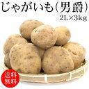 北海道北見産じゃがいも(男爵) 2Lx3kg [使いやすい量]【野菜便】【常温便】【送料無料】【代引き不可】