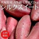 茨城県産シルクスイート(生) A等級 Lサイズ 2kg[使いやすい量]【野菜便】【常温便】【送料無料】【代引き不可】