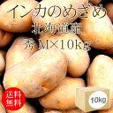 北海道産じゃがいも インカのめざめ 秀Mx10kg [箱買い]【野菜便】【常温便】【送料無料】【代引き不可】