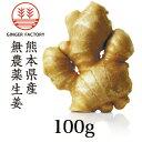 無農薬生姜100g 熊本県産