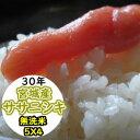 【乾式無洗米】【送料無料】平成30年産 乾式無洗米 宮城産ササニシキ 20kg (5Kgx4)