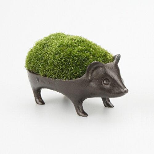 【レビューを書いて5%OFF!】 能作 苔盆栽 はりねずみ-青銅 (花器)の写真