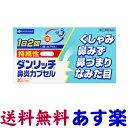 【第(2)類医薬品】ダンリッチ持続性鼻炎カプセル 20カプセル