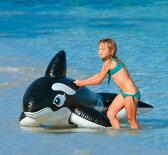 インテックス 浮き輪 フロート クジラ プール用 58561 ボート プール 海 川 海水浴 アウトドア キャンプ レジャー用品 水遊び 05P03Sep16