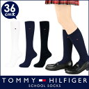 TOMMY HILFIGER|トミーヒルフィガー スクールソックスワンポイント 刺繍 36cm丈 レディス ハイソックス 靴下3481-600ポイント10倍