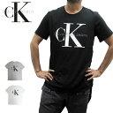 Calvin Klein カルバンクライン リシュー ロゴ 半袖T