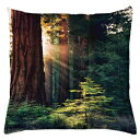 Ambesonne National Parks Throw Pillow Cushion Cover