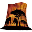 Funy Decor Mother and Baby African Elephant Sunset