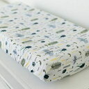Graced Soft Luxuries Fitted Changing Pad Covers 100% Breathable Cotton for Boys Girls, (Busy Bugs)