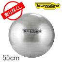 【3%OFFクーポン】【赤字売切り価格】テクノジム Techno Gym バランスボー (55cm) ウェルネスボール A0000154AA シルバー Wellness Tools Wellness Ball Home Silver おしゃれ スタイリッシュ アウトレット