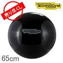 【3%OFFクーポン】【赤字売切り価格】テクノジム Techno Gym バランスボール (65cm) ウェルネスボール A0000155AA ブラック Wellness Tools Wellness Ball Home Black おしゃれ スタイリッシュ アウトレット