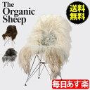 Organic Sheep オーガニックシープ Sheepskin シープスキン Sheepskin Longhair シープスキン ロングチェア 北欧雑貨