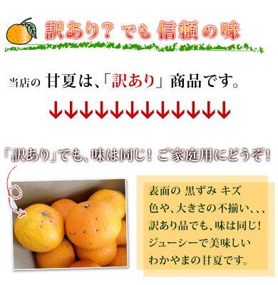 あまなつ5kg(甘夏)送料無料、わかやま産あまなつ、有田みかんの里で知られる和歌山県産あまなつ。初夏のフルーツ甘夏を産地直送、あまなつ送料込みで訳あり特価。新鮮あまなつ、スイーツ甘夏。さわやかな甘味の甘夏、フレッシュ柑橘の甘夏