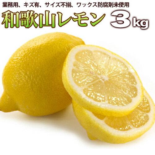 レモン 3kg 業務用(わかやま県産)【送料無料】