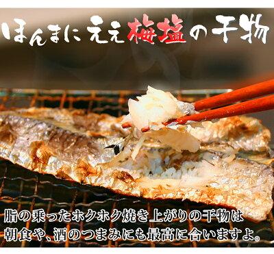 魚介加工品干物セット送料無料真アジカマスイサキキスタチウオ