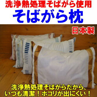 它受到清洗熱熱蕎麥枕頭 50 x 35 釐米除塵是不太可能,硬昆蟲一邊蕎麥皮枕頭。 枕頭枕枕枕頭枕枕枕頭 sobamacra 附近是熱枕蕎麥枕枕頭抗菌枕頭