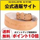 【ポイント10倍】GOLD'S GYM(ゴールドジム)アンティークレザーベルト(パット付) G3323 XSサイズ