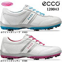 ECCO echo CASUAL COOL casual cool lady's golf shoes 120043