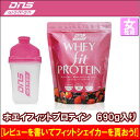 Dns_protein_fit