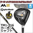 M2fw-tm1-t00