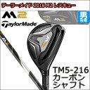M2res-tm5-t00