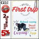 16-17 DVD snow First trip / MELISSA ガールズライダーのフリーランムービー SNOWBOARD スノーボード