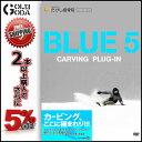 16-17 DVD snow BLUE 5 carving plug-in アルパインボードのフリーライディングムービー カービング スノーボード アルペン