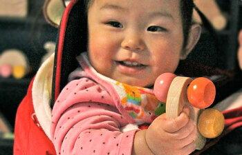 ねこ車木のおもちゃ出産祝い名入れギフト日本製おしゃぶり赤ちゃんおもちゃ銀河工房人形
