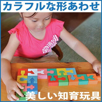 SHAPED BLOCKS OF COLOUR Wooden Toys (Ginga Kobo Toys) Japan