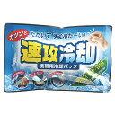 紀陽除虫菊 携帯用冷却パック 速攻冷却 【RCP】【K-2001】
