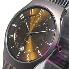 SKAGEN (scar gene) 233XLTMD ultra slim titanium mesh black men watch watch