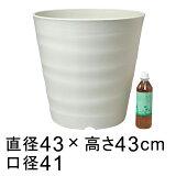 フレグラーポット 43cm アイボリー 大型 植木鉢 おしゃれ ◆室内使用には大きすぎることもありますのでサイズをよくご確認下さい◆