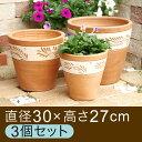 おしゃれ 植木鉢 テラコッタ 鉢 白化粧蔦柄深型 素焼き鉢 〔大中小3個セット〕