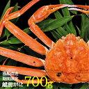 獲れ次第発送【送料無料】共栄丸の越前がに700g【RCP】【...