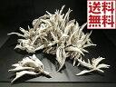 パワーストーン・お部屋 浄化用ホワイトセージクラスター(枝付き)50g量り売りオーガニック(無農薬)