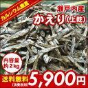 【送料無料】新鮮!瀬戸内産かえり(おかずいりこ・煮干・たべるいりこ)(上乾)2kg