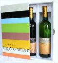 北条ワイン ヴィンテージ 赤白 ギフトセット 鳥取 ワイン ギフト プレゼント お歳暮 父の日 お中元